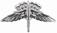 usaf freefall jumpwings badge