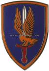 us army csib 1st aviation brigade