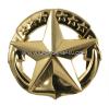 us navy command at sea badge