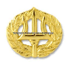 us navy command ashore badge