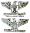 air force colonel rank miniature